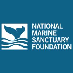 marine-logo-HQ-1